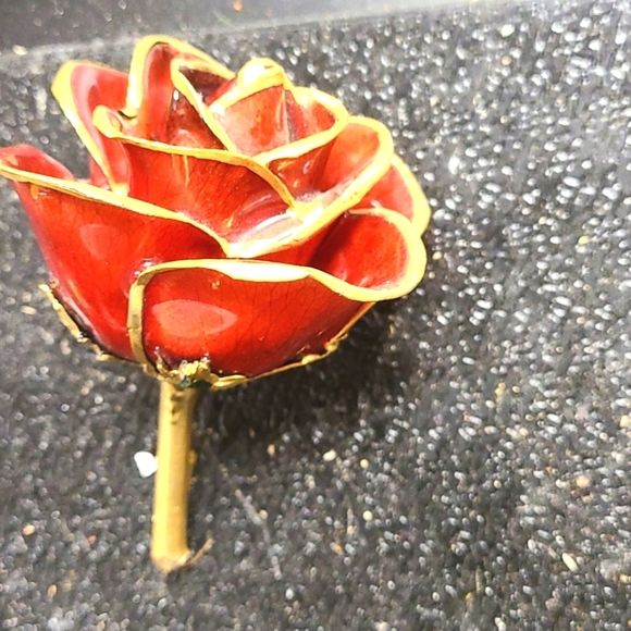 24Kt Red Gold Trimmed Rose A real, fresh cut red r